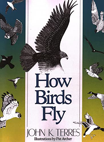 9780811724432: How Birds Fly: Under the Water and through the Air