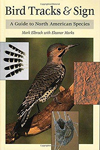 Bird Tracks & Sign: A Guide to North American Species (Paperback): Mark Elbroch