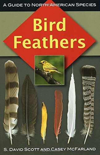 9780811736183: Bird Feathers: A Guide to North American Species