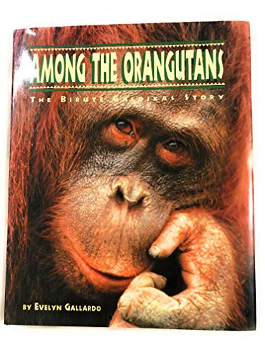9780811800310: Among the Orangutans (The Great Naturalists)