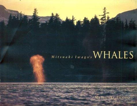 9780811805858: Mitsuaki Iwago's Whales