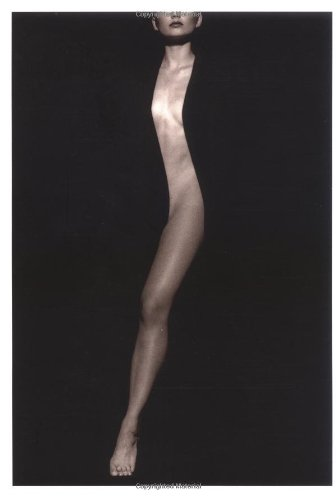 9780811807623: The Body: Photographs of the Human Form