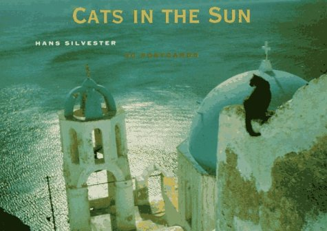 Cats in the Sun Postcard Book: Hans Silvester