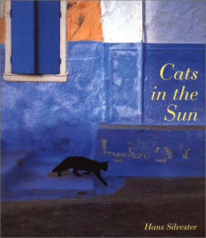 9780811810937: CATS IN THE SUN ING