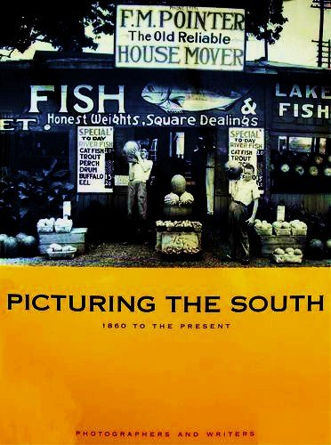 9780811813433: Picturing the South: 1860 to the Present