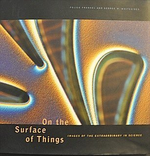 9780811813716: On the Surface of Things: Images of the Extraordinary in Science