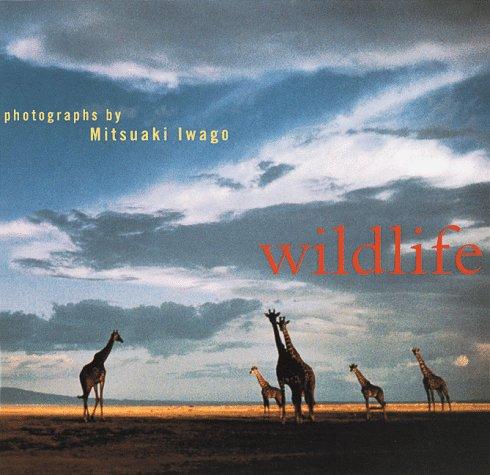 9780811818582: Wildlife