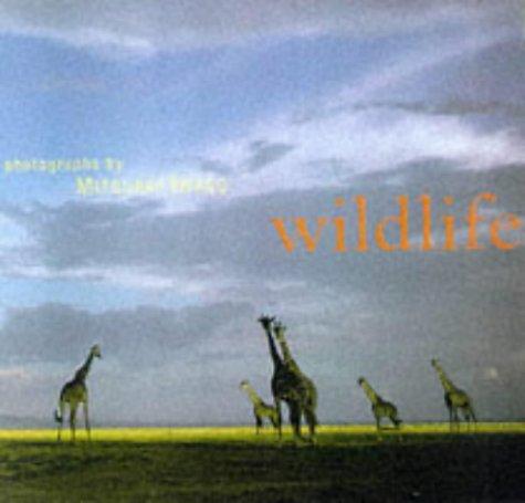 9780811822039: Wildlife