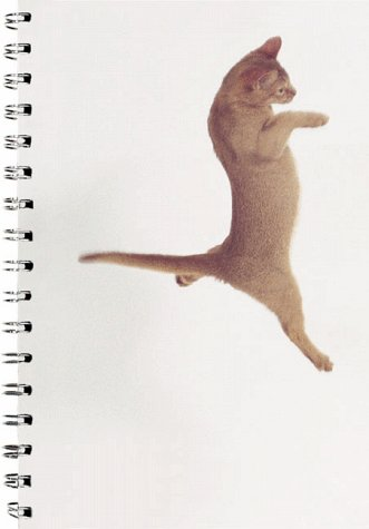 9780811825313: Dancing with Cats Solo Cat Journal