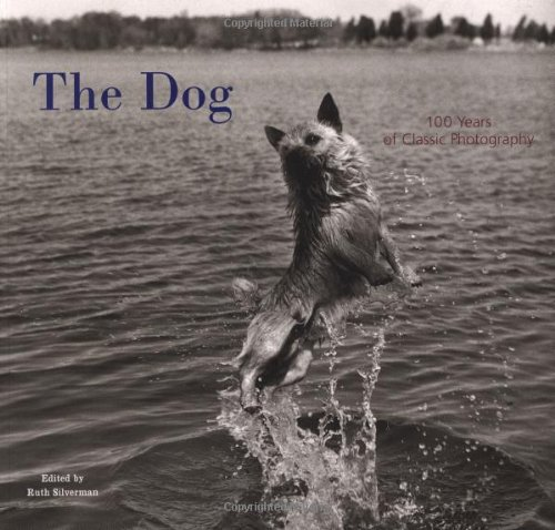 The Dog 100 Years of Classic Photography