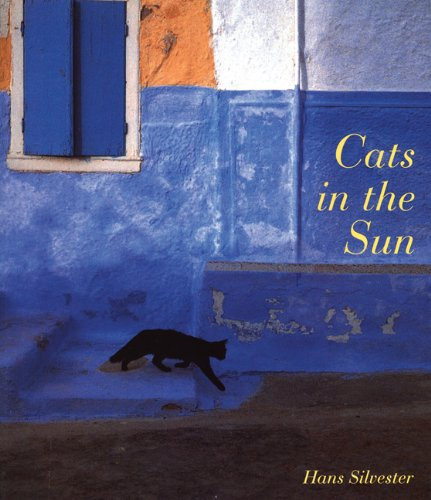 9780811847667: Cats in the Sun