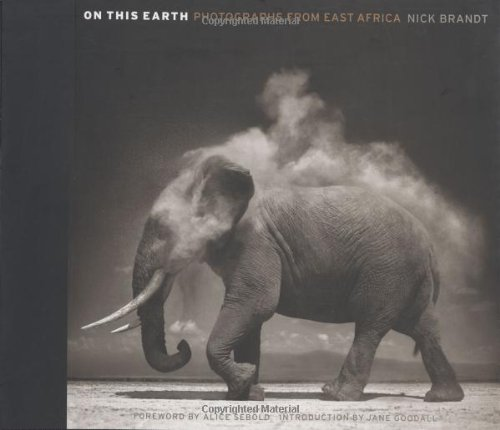 On This Earth: Photographs from East Africa: Nick Brandt