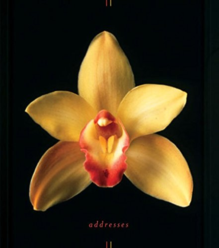 9780811849265: Orchids Address Book (Stay in Touch)