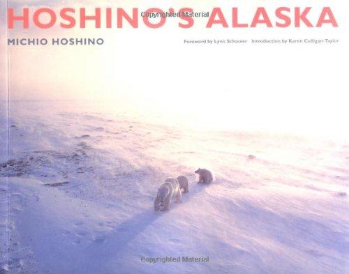9780811856515: Hoshino's Alaska