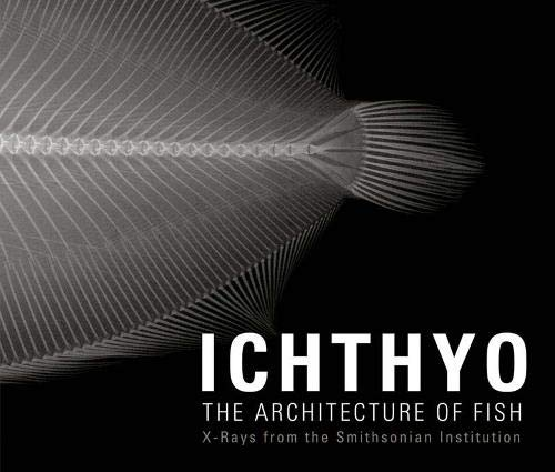 9780811861922: Ichthyo: The Architecture of Fish