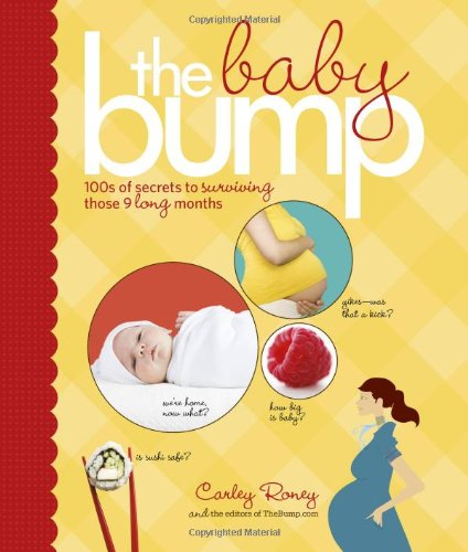 9780811876940: The Baby Bump: 100s of Secrets to Surviving Those 9 Long Months
