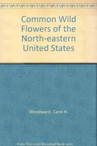 Wildflowers of the Northeastern United States: Harold William Rickett;