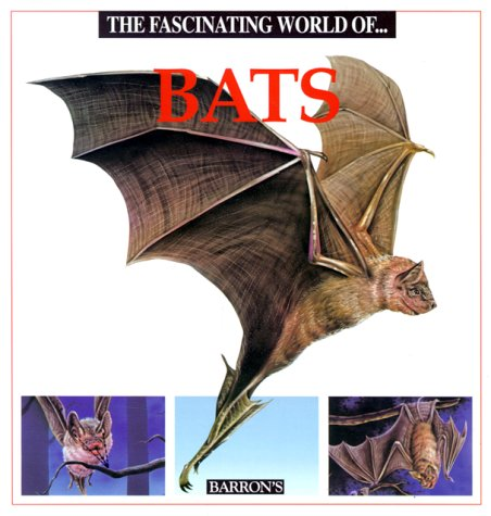 9780812019537: The Fascinating World Of...Bats
