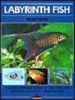 Labyrinth Fish: Helmut Pinter