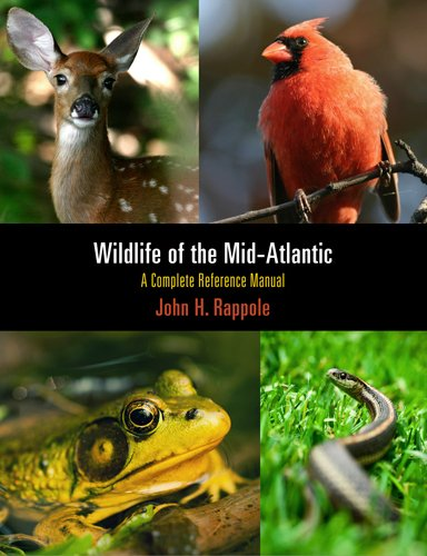9780812222012: Wildlife of the Mid-Atlantic: A Complete Reference Manual