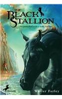9780812423549: The Black Stallion