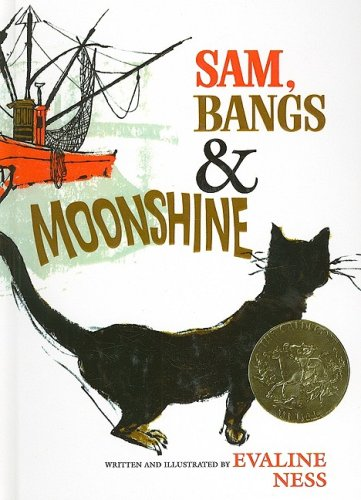 9780812428056: Sam, Bangs & Moonshine (Owlet Book)