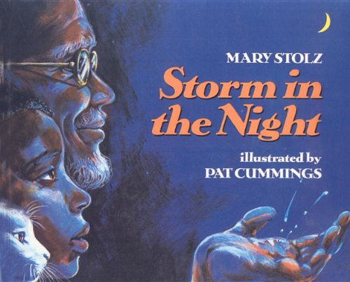 9780812495942: Storm in the Night