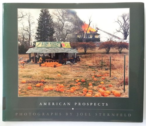 American Prospects: Photographs: Sternfeld, Joel;Museum of Fine Arts, Houston