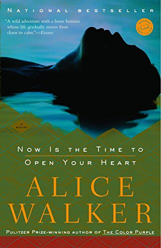 9780812971392: Now Is the Time to Open Your Heart: A Novel