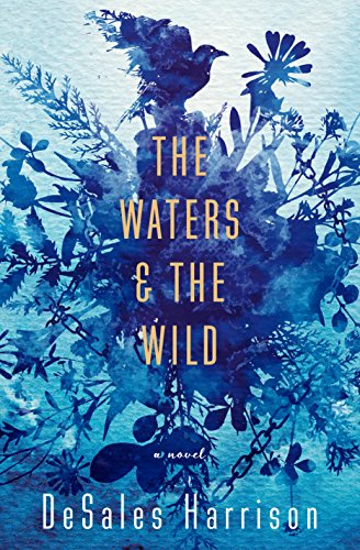 9780812989540: The Waters & The Wild: A Novel