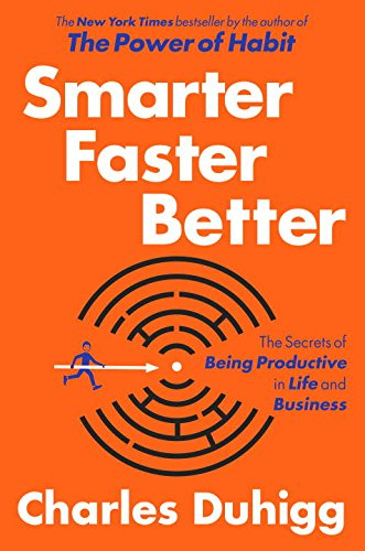 9780812989830: Smarter Faster Better: The Secrets of Productivity in Life and Business