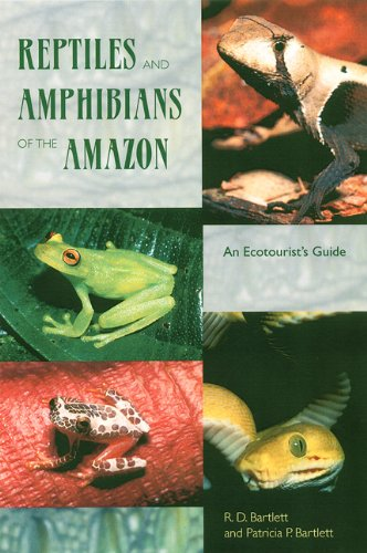 Reptiles and Amphibians of the Amazon: An Ecotourist's Guide (Paperback): Richard D. Bartlett