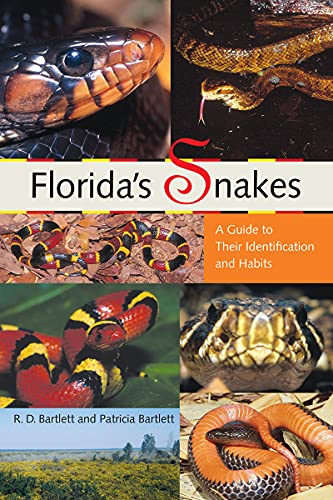 Florida's Snakes: A Guide to Their Identification and Habits: Bartlett, Richard D.; Bartlett, ...