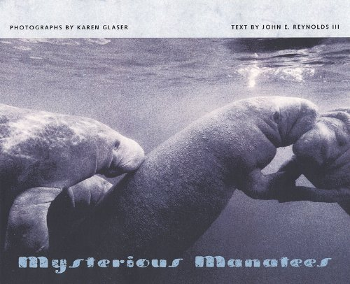 Mysterious Manatees: Photographs by Karen Glaser: John E. Reynolds III