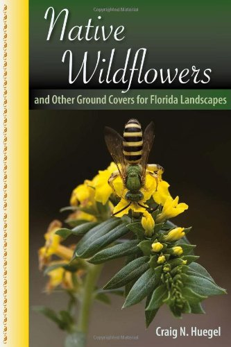 9780813039800: Native Wildflowers and Other Ground Covers for Florida Landscapes