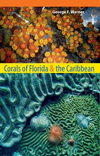 9780813041650: Corals of Florida and the Caribbean
