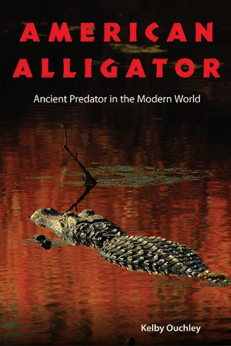 9780813049137: American Alligator: Ancient Predator in the Modern World