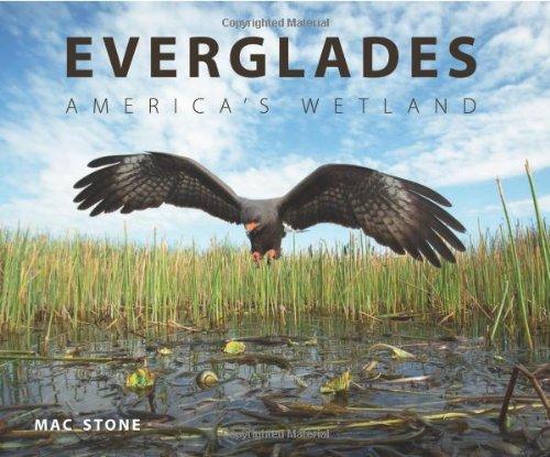 Everglades: America's Wetland: Stone, Mac
