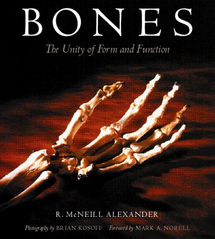 9780813338064: Bones: The Unity Of Form And Function
