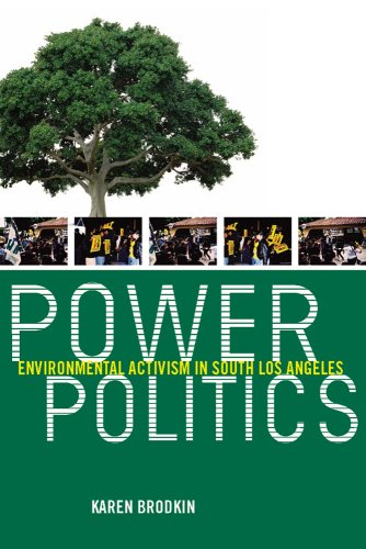 9780813546087: Power Politics: Environmental Activism in South Los Angeles