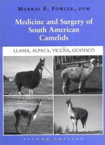 9780813803975: Medicine and Surgery of South American Camelids: Llama, Alpaca, Vicuna, Guanaco
