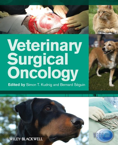9780813805429: Veterinary Surgical Oncology