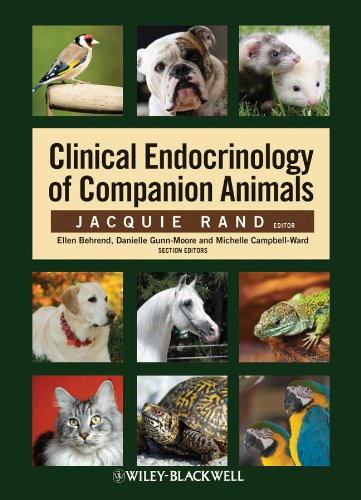 9780813805832: Clinical Endocrinology of Companion Animals