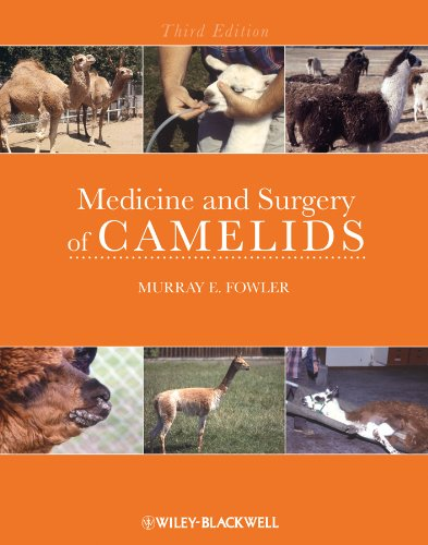 9780813806167: Medicine and Surgery of Camelids