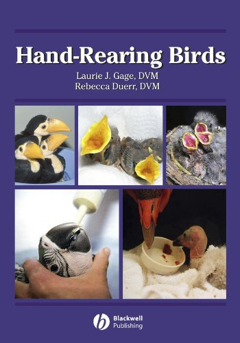 9780813806662: Hand-Rearing Birds