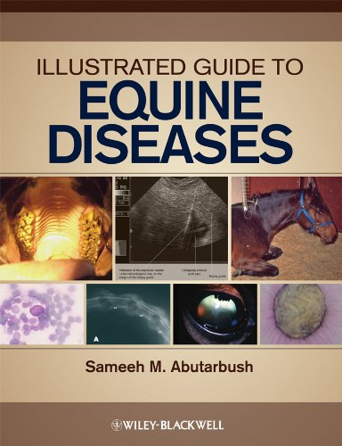 9780813810713: Illustrated Guide to Equine Diseases
