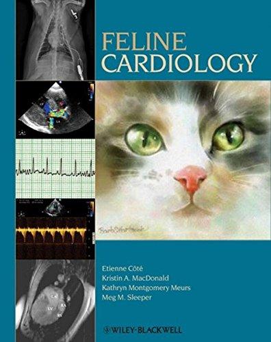 9780813812427: Feline Cardiology