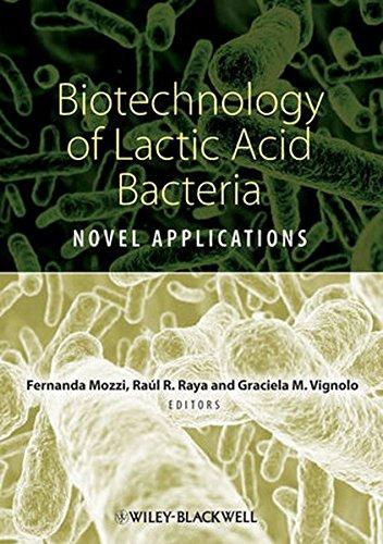 application of lactic acid bacteria essay
