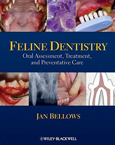 9780813816135: Feline Dentistry: Oral Assessment, Treatment, and Preventative Care