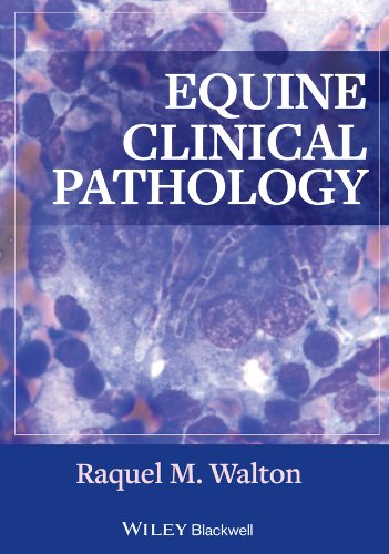 9780813817194: Equine Clinical Pathology